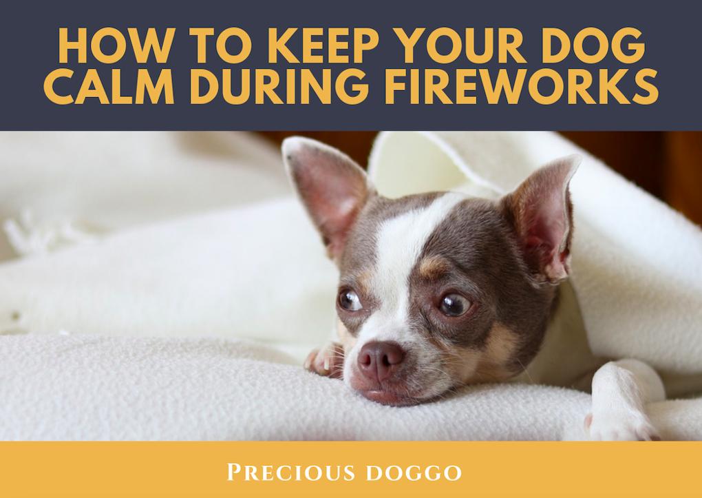 Keep your dog safe during fireworks